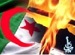 """""""البصائر"""" في حوار مع أحد الجزائريين المتنصرين العائدين إلى الإسلام"""