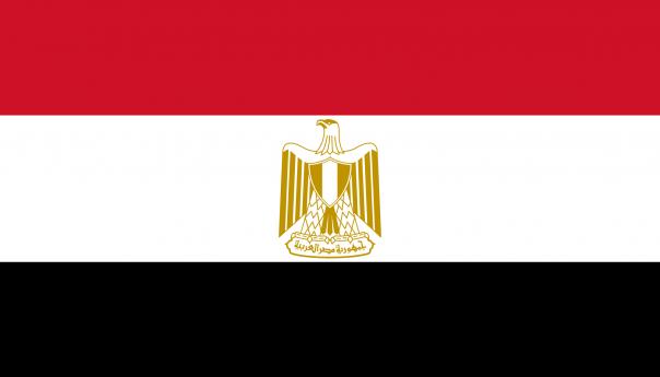 ربيع مصر الجديد